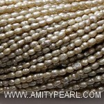 7435 rice pearl 2-2.5mm champagne color.jpg